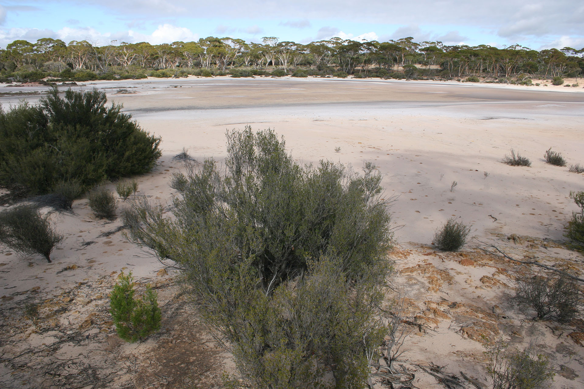One of the dry lakes.