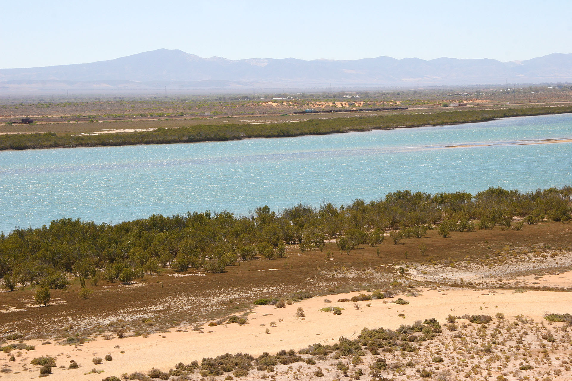 Mangroves in the front and Flinders Ranges in the back.