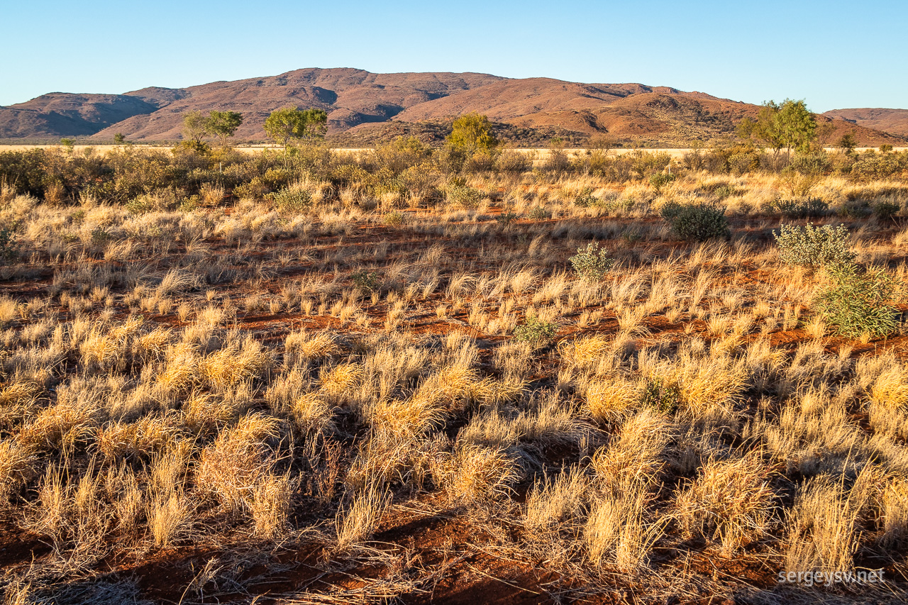 MacDonnell Ranges in the morning.