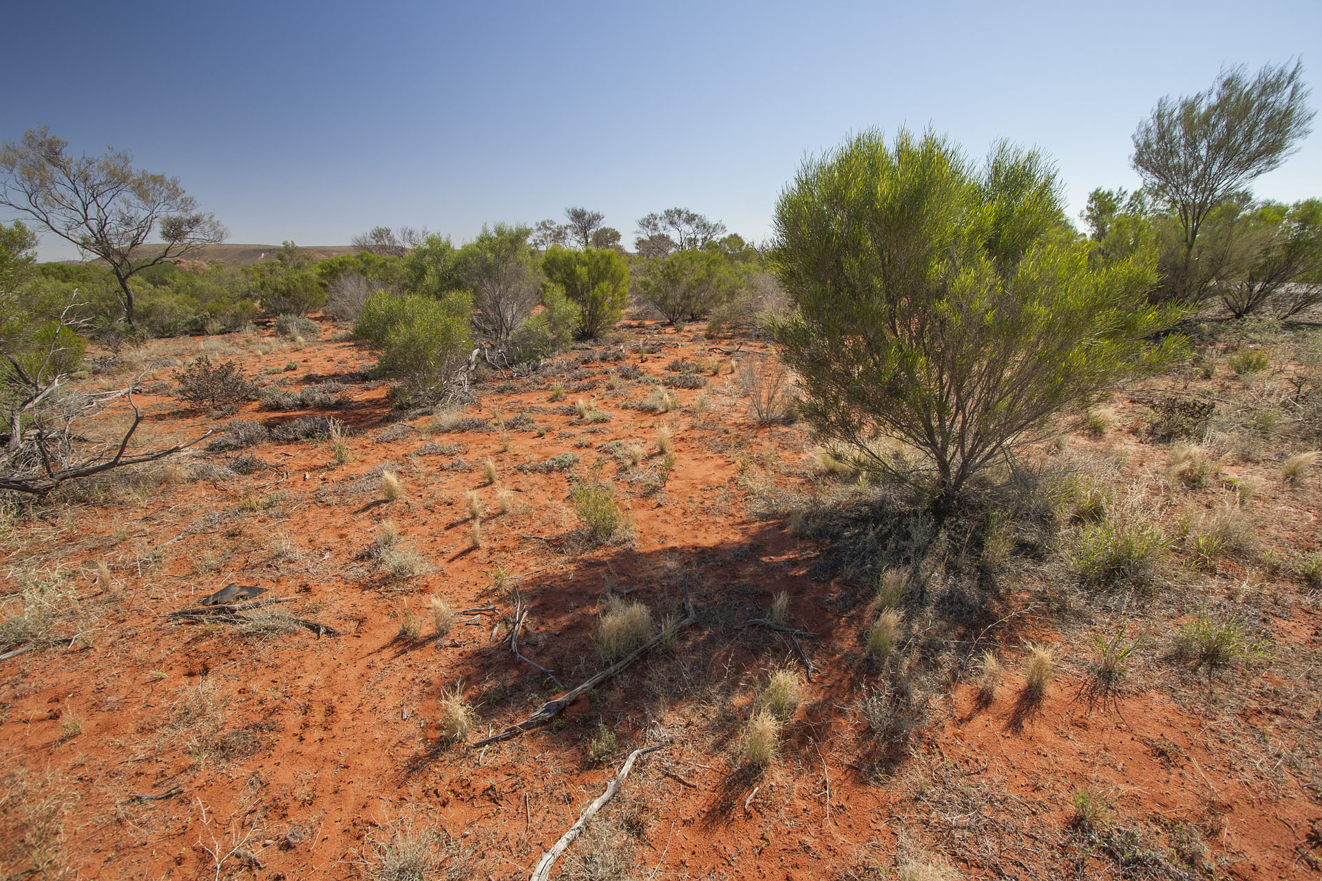 The unwelcoming outback.