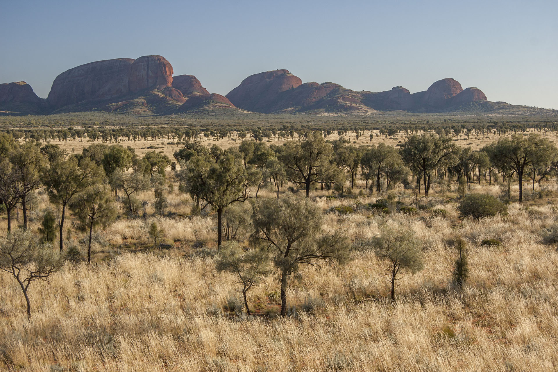 Kata Tjuta is getting closer.