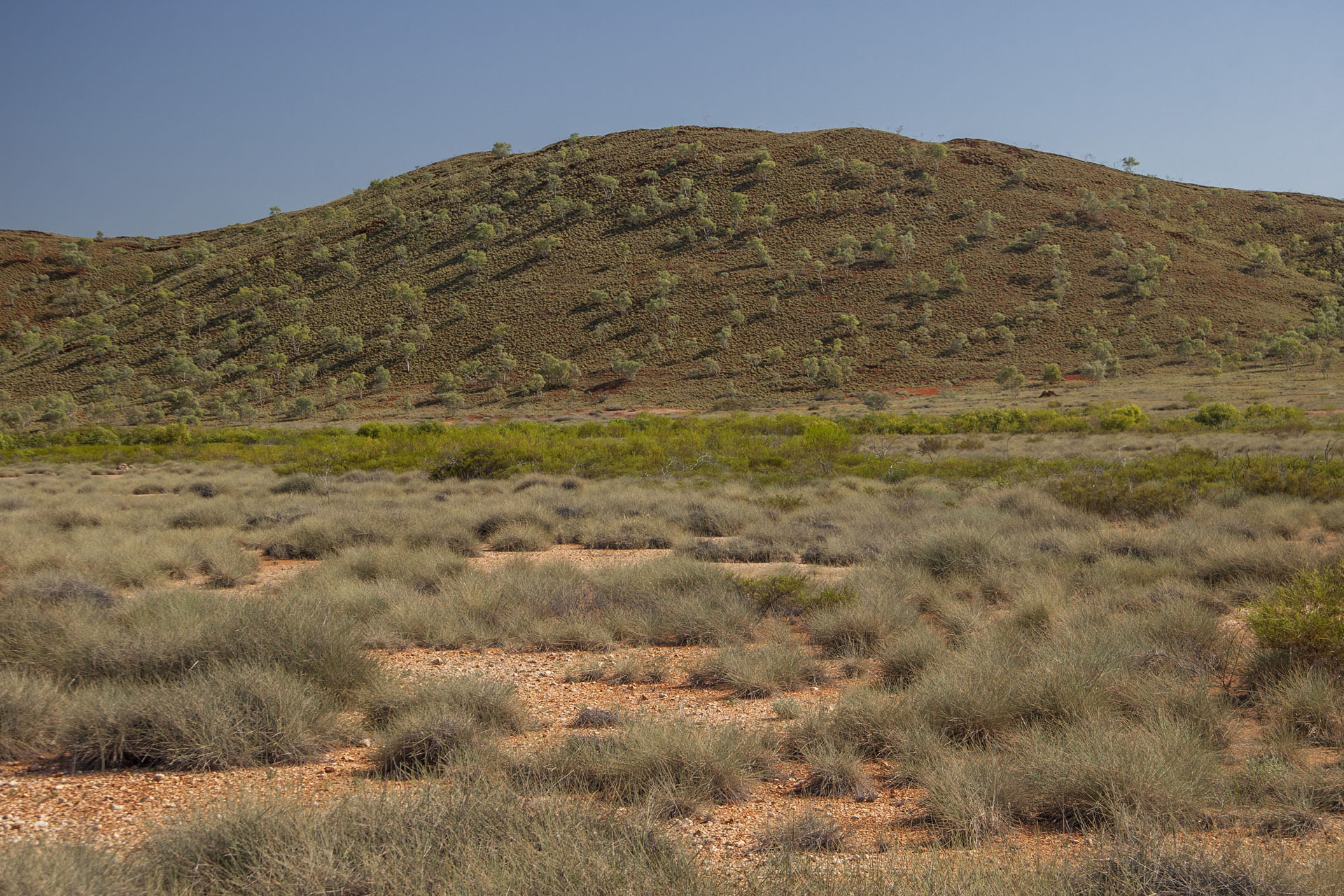 Hills, trees, spinifex.