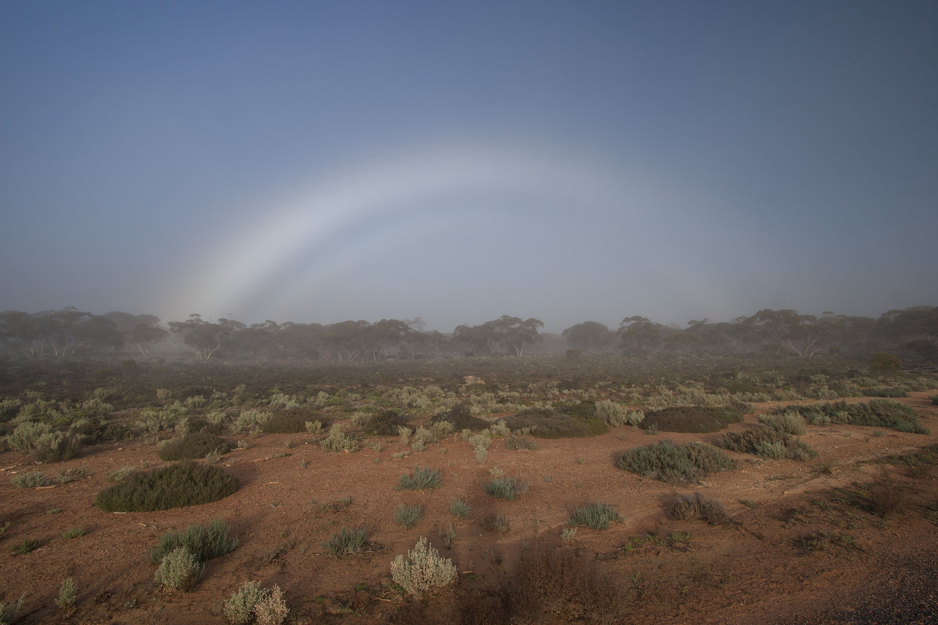 A foggy rainbow.